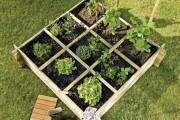 Jardin bio : comment créer son potager ?