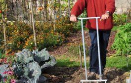 Les principes essentiels à tenir en compte pour entretenir un jardin bio