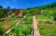 Jardin Bio : optez pour des engrais de fond