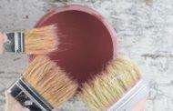 Tout ce qu'il faut savoir sur la peinture biologique