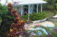 Pour que votre jardin soit plus douillet
