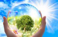 Transition écologique : comment l'adopter ?